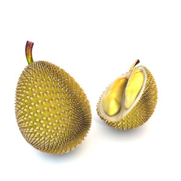 Durian Fruit 3d model