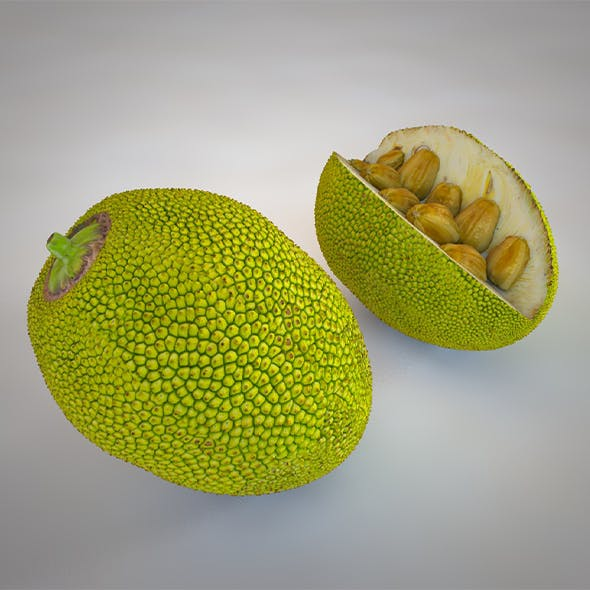 Jack Fruit 3d model