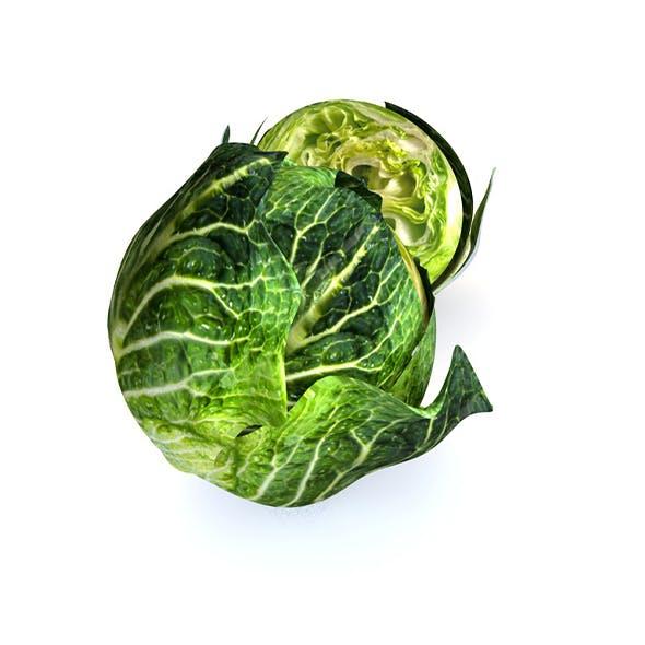 Cabbage (Green) V2 3d model