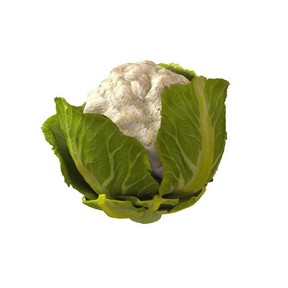 Cauliflower 3d model