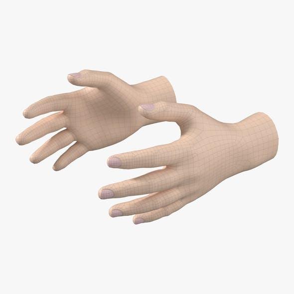 Endomorph Male Hand Base Mesh 01