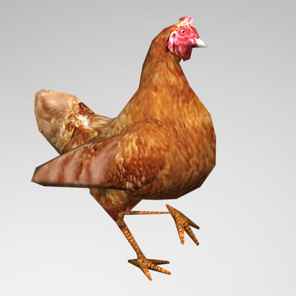 Animated Chicken - 3DOcean Item for Sale