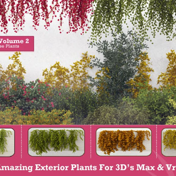50 Exterior Plants For 3D's Max & Vray: Volume 2
