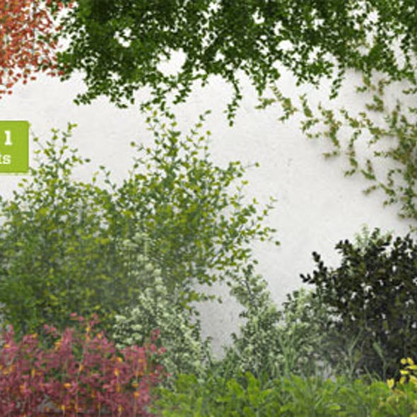 50 Exterior Plants For 3D's Max & Vray: Volume 1