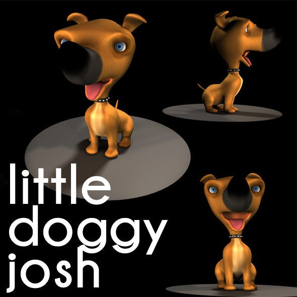 little cute  doggy josh