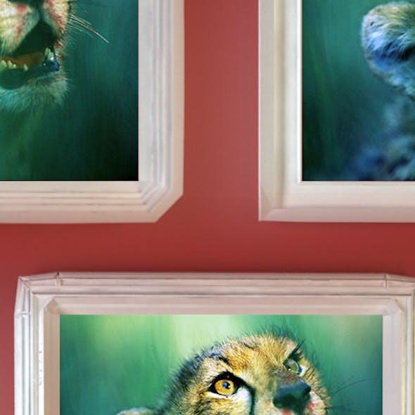 Plaster Photo Frames