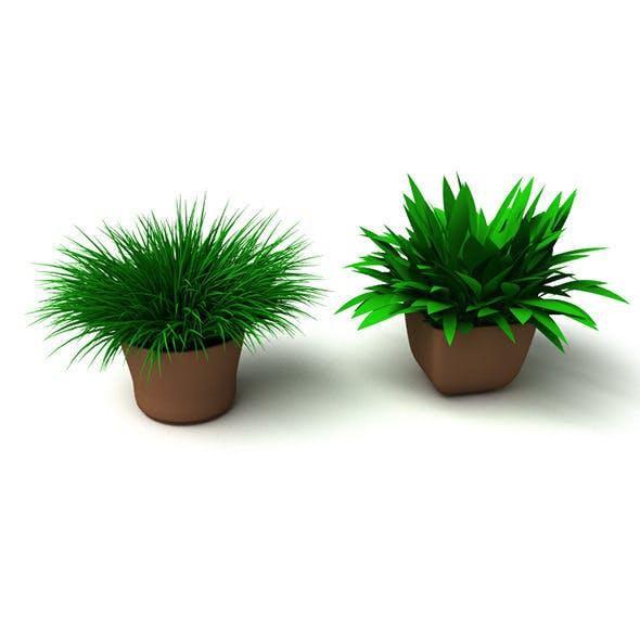 Grass Plant - 3DOcean Item for Sale