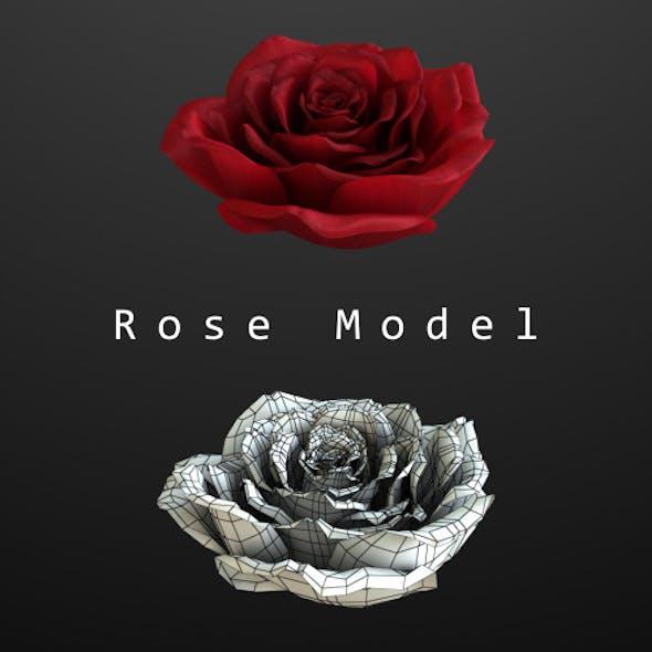 Rose Model