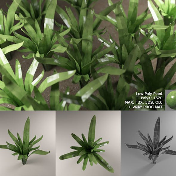 Low Poly Plant with Vray Material