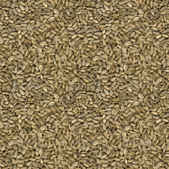 Sunflower Seeds Seamless Texture