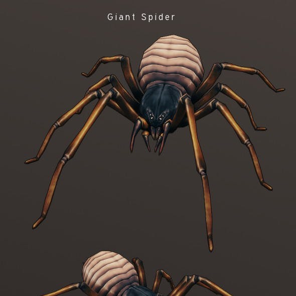 LowPoly HandPainted Giant Spider