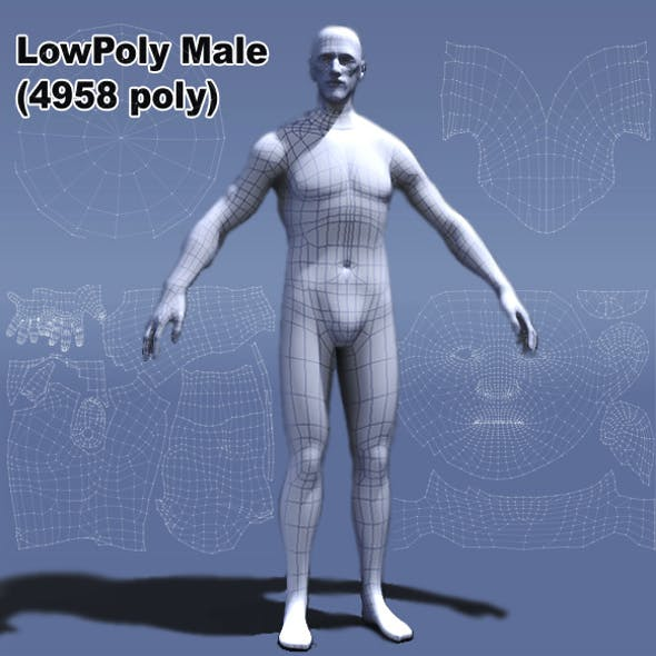 Low Poly Male Human