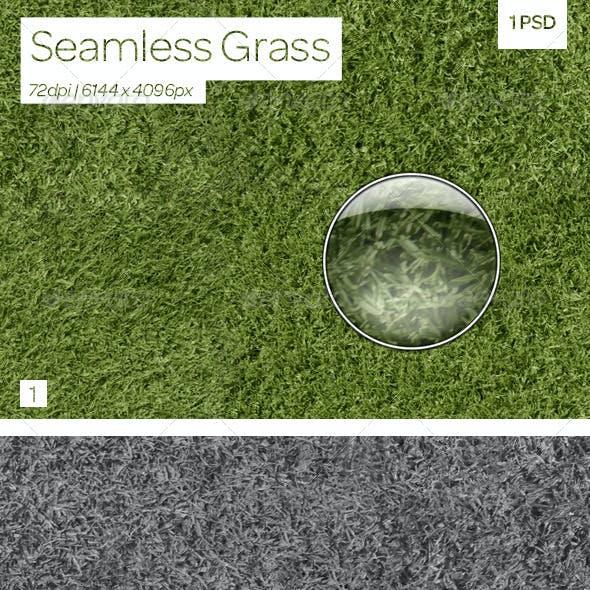Seamless Grass Texture & Pattern