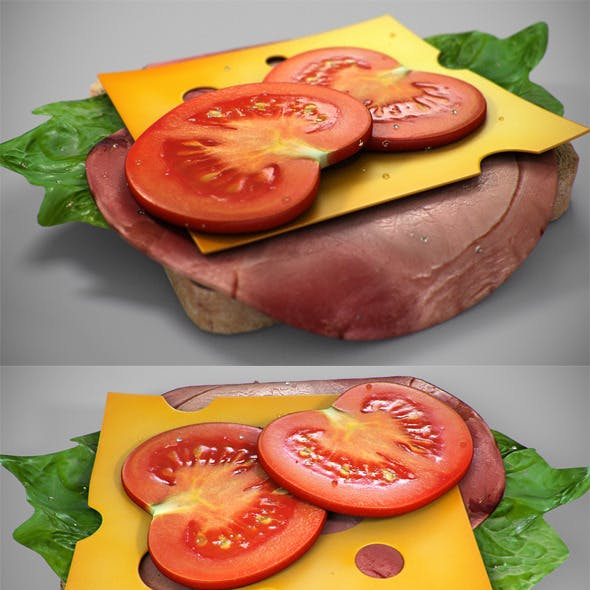 Realistic Juicy Sandwitch