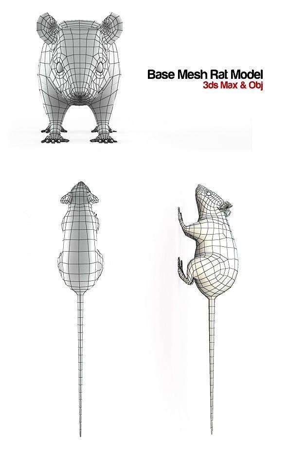 Base Mesh Rat Model - 3DOcean Item for Sale