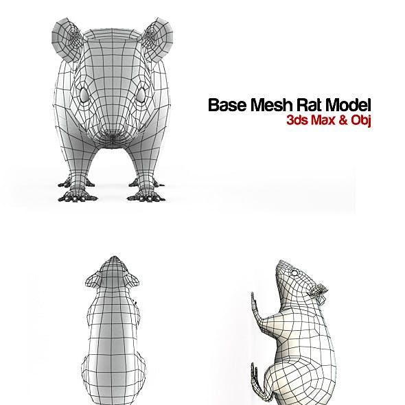 Base Mesh Rat Model
