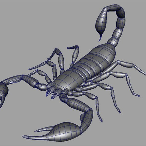 Scorpion Base mesh