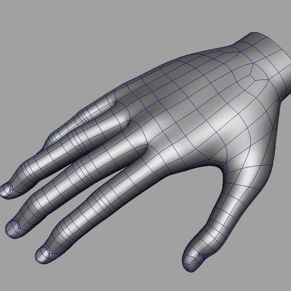 Hand Base mesh - 3DOcean Item for Sale