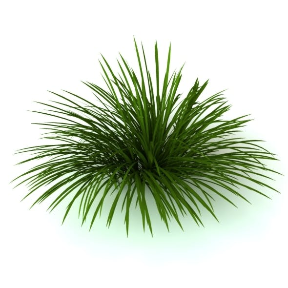 3D Model Wild grass - 3DOcean Item for Sale