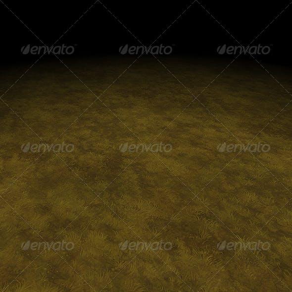 Grass 02 Texture Tile