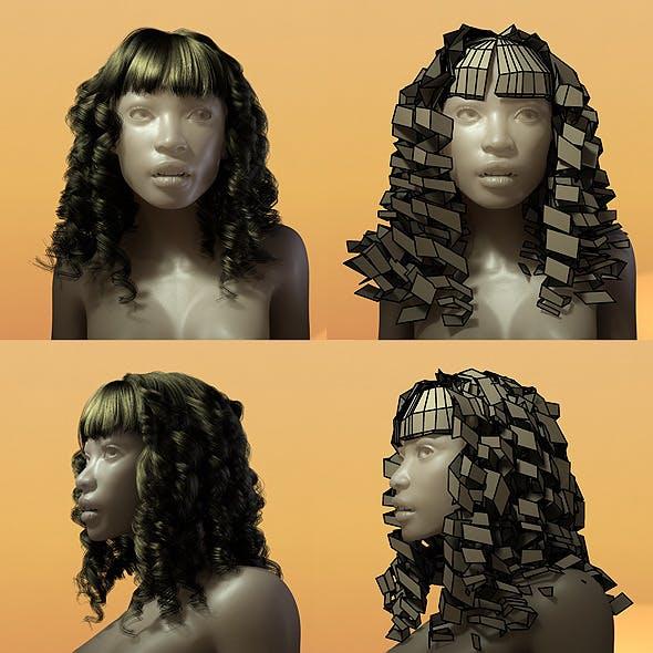 Female Hair Style 004