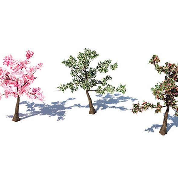 Lowpoly Cherry Tree
