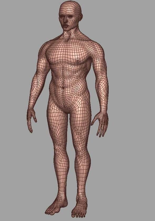 Man - 3DOcean Item for Sale