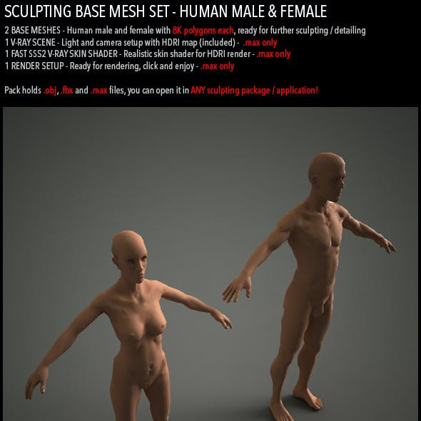 Sculpting Base Mesh Pack - Human Male and Female