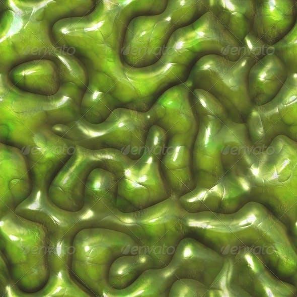 Alien Pod Texture