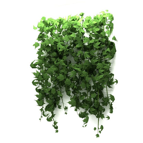 Wall Hanging Plant - 3DOcean Item for Sale