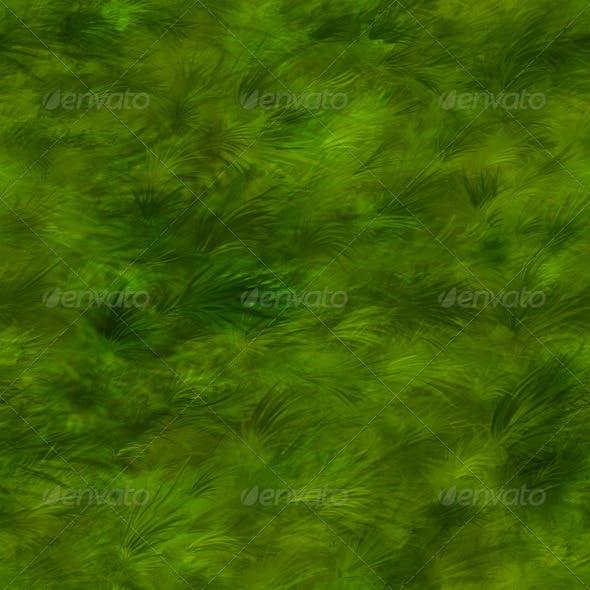 Grass Texture Tileable