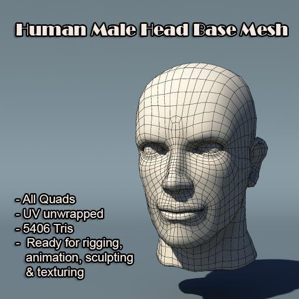 Human Male Head Base Mesh - 3DOcean Item for Sale
