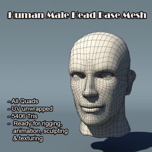 Human Male Head Base Mesh