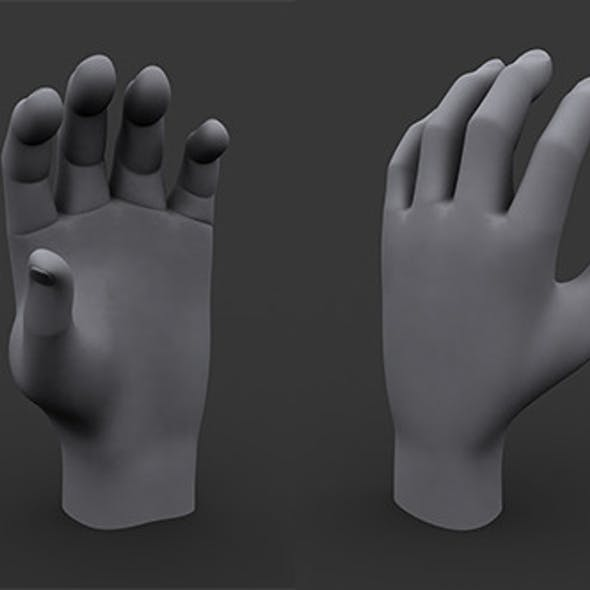 Human Male Hand MP and HP Model