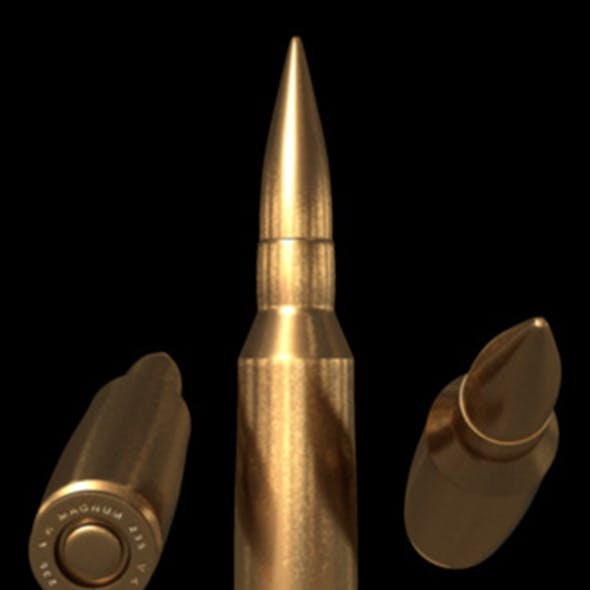 Bullet10