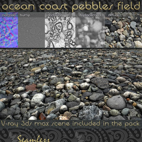 Seamless Ocean Coast Pebbles field