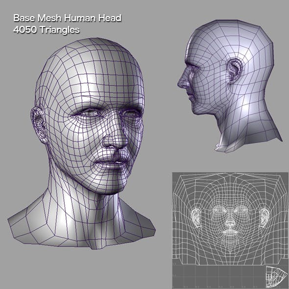 Base Mesh Human Head - 3DOcean Item for Sale