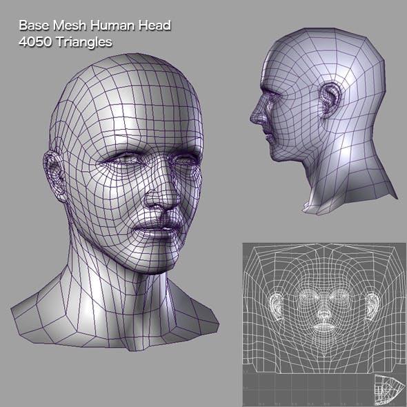 Base Mesh Human Head