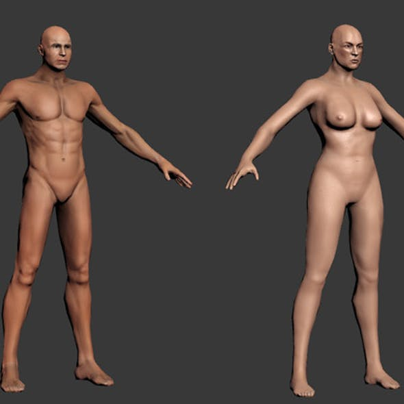 Human - Male and Female base mesh - rigged
