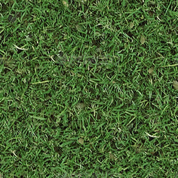 Autumn Tileable Grass