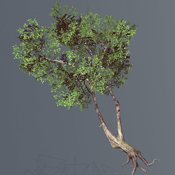 Next Gen Tree (Low Poly)