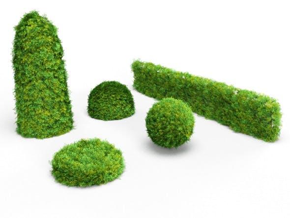 Realistic Bush - Hedge Bundle - 3DOcean Item for Sale