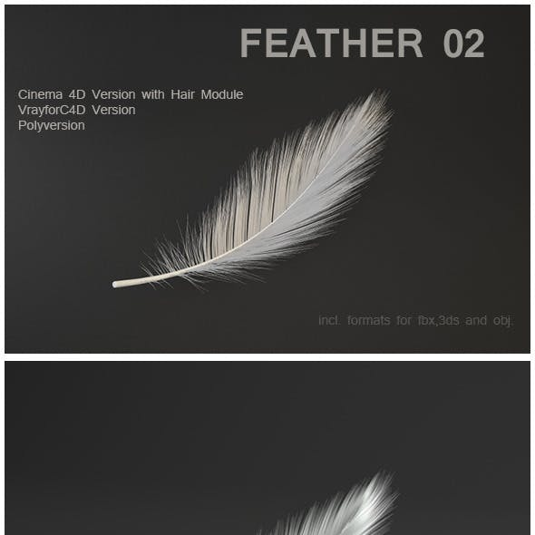 Feather 02