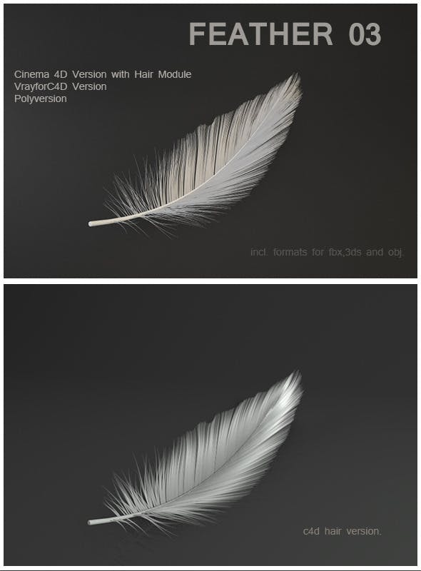 Feather 03 - 3DOcean Item for Sale