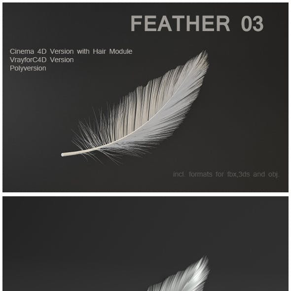 Feather 03