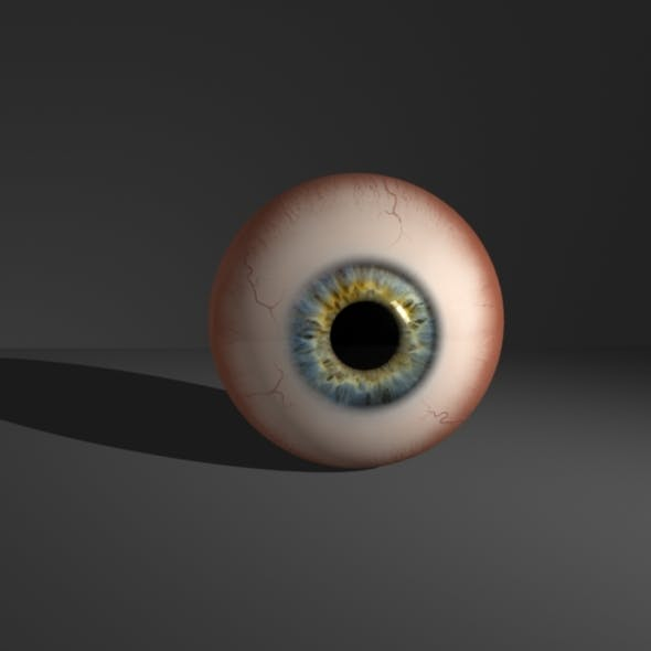 Realistic Eyeball - 3DOcean Item for Sale