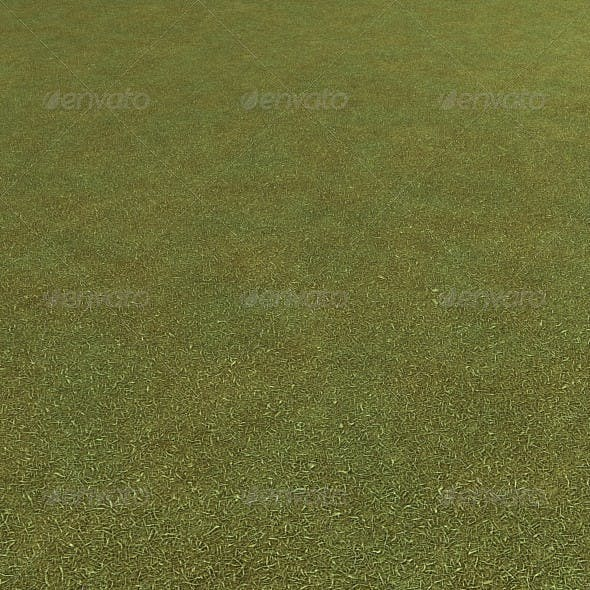 Grass Seamless Ground Texture - 3DOcean Item for Sale