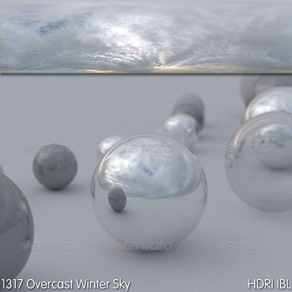 HDRI IBL 1317 Overcast Winter Sky