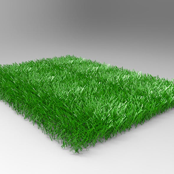 Grass / Weed