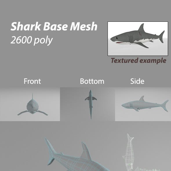 Shark BASE MESH